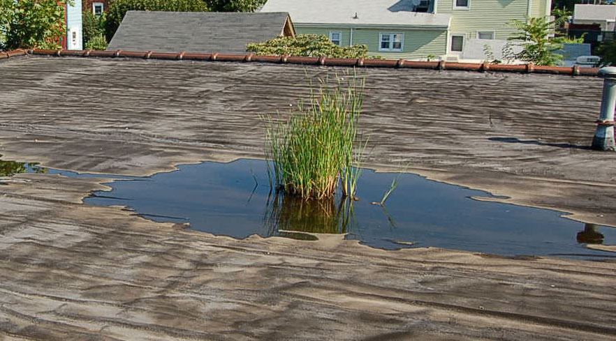 What Is Ponding Roof Water Amp How Do I Know If I Have It